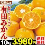みかん 和歌山産 有田みかん 10kg1箱 送料無料 蜜柑