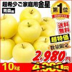 りんご 金星 10kg1箱 青森県産 徳用 ご家庭用 訳あり・数量限定 林檎 果物