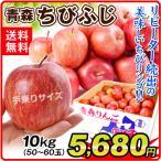 りんご ちびふじ 10kg1箱 青森県産 小玉 林檎 食品 果物