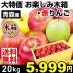 りんご お楽しみ木箱りんご 約20kg1箱 「赤りんご」 青森県産 ご家庭用 訳あり 林檎 食品 果物