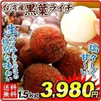 ライチ 食品 お買得 台湾 生ライチ 黒葉 1.5kg 1組 南国フルーツ 国華園