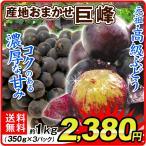 ぶどう 産地おまかせ 巨峰 約1kg1箱 送料無料 ご家庭用 葡萄 ブドウ 食品