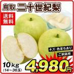 梨 二十世紀梨 10kg1箱 大特価 鳥取県産 ご家庭用 なし 食品
