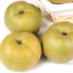 梨 幸水 4kg1箱 和歌山県産 紀の里の梨 なし 食品