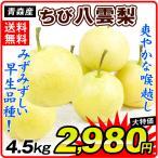 梨 ちび八雲梨 4kg1箱 南部産 ご家庭用 なし 食品