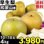 梨 早生梨 4kg1箱 和歌山県産 なし 食品