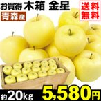 りんご 金星 木箱 約20kg お買得 格安 青森県産 ご家庭用 訳あり きんせい 林檎 黄金りんご 希少品種「数量限定」 果物