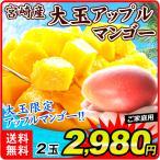 マンゴー 大玉アップルマンゴー 2玉 1箱 宮崎県産 マンゴー ご家庭用 約800〜1kg入り 大玉限定