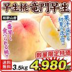 桃 もも 4kg 和歌山県産 桃 竜門早生 ご家庭用 果物 食品