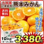 みかん 大特価 熊本産 みかん 10kg 柑橘 食品