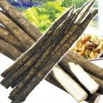 ごぼう 青森産 ごぼう 8kg ご家庭用 野菜 食品 グルメ 国華園