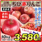 りんご 青森産 新物おまかせちび 赤りんご 10kg 林檎 果物 国華園