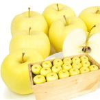 りんご 青森産 金星 木箱 約20kg 1箱 送料無料 食品 国華園