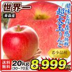 りんご 青森産 世界一 木箱 約20kg 1箱 送料無料 食品 国華園