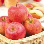 りんご 山形産 ふじ・サンふじ(10kg)24〜54玉 ご家庭用 ふじ サンふじ 林檎 フルーツ 果物 国華園
