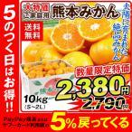 みかん 大特価 熊本産みかん(10kg)徳用 ご家庭用 数量限定 蜜柑 柑橘 フルーツ 果物 食品 国華園