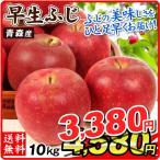 りんご お買得 青森産 早生ふじ(10kg)徳用 ご家庭用 数量限定 フルーツ 果物 林檎 国華園