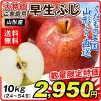 りんご 山形産 早生ふじ(10kg)24〜54玉 ご家庭用 現在発送中 林檎 フルーツ 果物 国華園