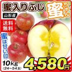 りんご 大特価 山形産 ご家庭用 蜜ちゃん(10kg)蜜入りふじ 24〜54玉 数量限定 林檎 みついり 果物 国華園