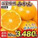 みかん ご家庭用 熊本産みかん(10kg)蜜柑 柑橘 フルーツ 果物 食品 国華園