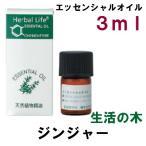 生活の木 エッセンシャルオイル・精油 ジンジャー 3ml