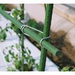 【φ16イボ竹の十字固定用】 セキスイ 菜園フックバンド16×16 6P【6個×20パック】