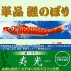 単品こいのぼり☆寿光鯉☆赤5m鯉のぼり