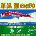 単品こいのぼり☆寿光鯉☆パープル3m鯉のぼり
