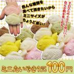 和菓子 白い たいやき ミニ たい焼き チョコ カスタード 餡 豆乳  おやつ 差し入れ お土産 もちもち お祝い お歳暮 ギフト