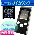 【その場で最大1000円OFFクーポン配布中!】 日本版SOEKS 01M ガイガーカウンター 累積放射能測定器