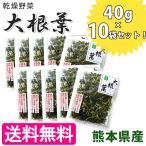 吉良食品 大根葉 40g×10袋 こだわり乾燥野菜 熊本県産 干し大根葉 国産