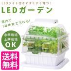 LEDガーデン 室内栽培 水耕栽培 土壌栽培 学研ステイフル Gakken LEDライト付き 83006 実験キット 観察キット