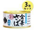 木の屋 金華さば水煮 缶詰 彩 170g 3個セット サバ缶