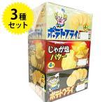 駄菓子 東豊製菓 ポテトフライ フライドチキン・じゃが塩バター・カルビ焼 3種セット 各20袋セット スナック菓子 おやつ お菓子