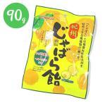紀州 じゃばら飴 90g×5袋セット 柑橘ペースト入り 和歌山県 北山村 国産 キャンディ