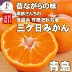 三ケ日みかん 青島 5キロ 黒柳さんちの低農薬 有機肥料みかん