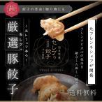 送料無料 厳選豚餃子 餃子50個 約1キロ 10人前 プチ贅沢 セレブ 冷凍 国産野菜