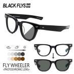 BLACKFLYS,ブラックフライ/20/FLY WHEELER,フライウィーラー 調光レンズ/BF-1407-01/BLACK/GREY PHOTOCHROMIC/サングラス/ユニセックス/ボスリントン