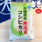 お米 BG無洗米 5kg 茨城県産コシヒカリ 令和元年産