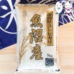 お米 5kg 新潟県魚沼産コシヒカリ 平成29年産