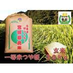 つや姫 宮城県産 2019年度産 特別栽培 純粋新米 玄米 30kg