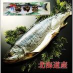 北海道産 銀毛 新巻鮭1本化粧箱入れ(2〜2.3kg)お歳暮の贈り物・ご自宅用に 人気商品