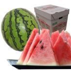 肥後浪漫西瓜 1玉(Mサイズ)(1玉約5kg)【送料無料】【熊本】【スイカ】【ご家庭用】【果物ギフト】【ご贈答用】【夏ギフト】【お祝い】【贈り物】
