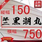 海龍系「4文字」150x750(縦横mm) 左右舷2枚セット