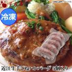 期間限定!近江牛・近江豚 手ごねハンバーグ(近江牛70%使用) 5個入り 冷凍