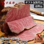 牛肉 肉 加工品 和牛 近江牛 ローストビーフ 『 サーロイン 』 極(きわみ) 500gブロック