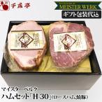 豚肉 肉 国産 ハム  ソーセージ H-30 ギフト包装代込
