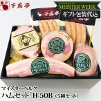 豚肉 肉 国産 ハム  ソーセージ H-50B ギフト包装代込