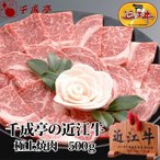 牛肉 肉 焼肉 和牛 「近江牛 極上焼肉 500g」 敬老の日 ギフト 2021 祖父 祖母 祖父母