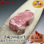 牛肉 肉 焼肉 和牛 近江牛サーロインブロック 1kg